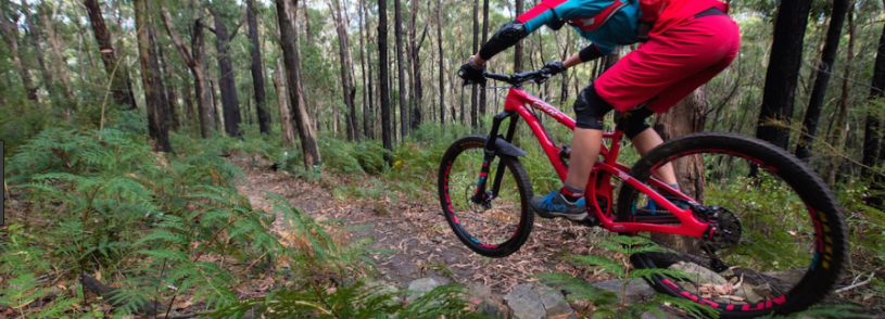 Things To Take With You For Mountain Biking Melbourne