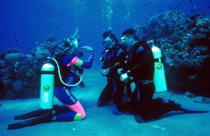 Freedive Course Bali