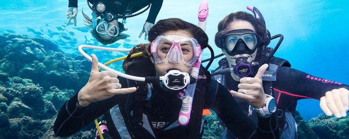 Freediving Tours