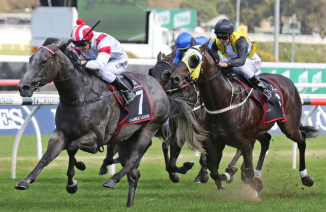 Racing Tips Play An Important Role To Win The Race In Sydney