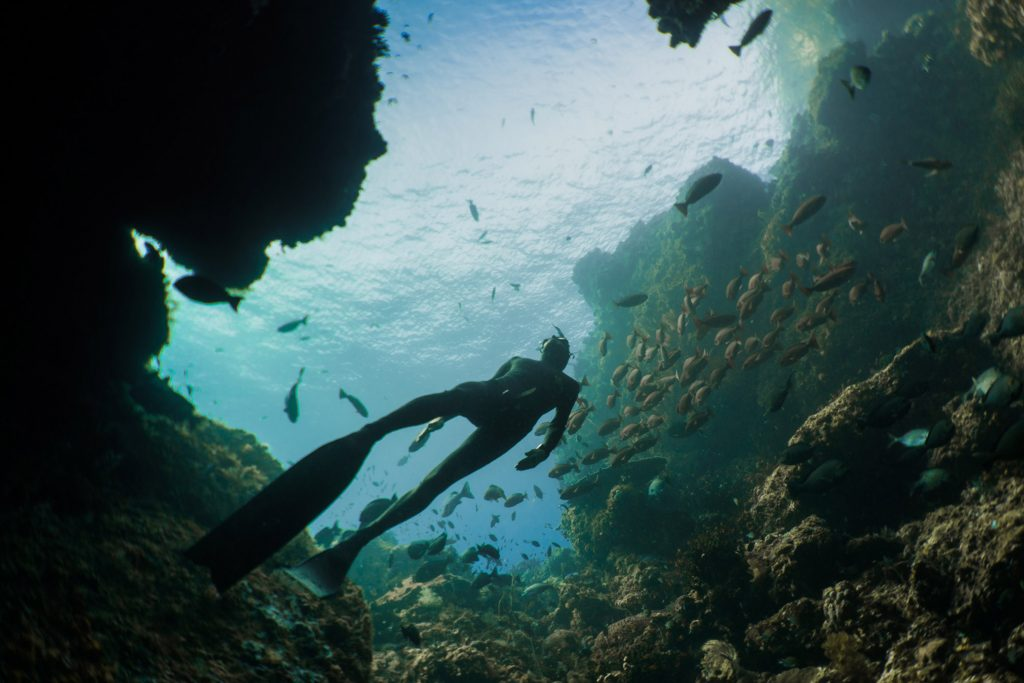Freediving Courses Bali – The Largest Growing Diving Sport